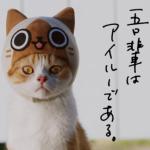 【猫ちゃん演じるCMが可愛い!!】3DS「モンハン日記 アイルー村DX」のwebCMの猫ちゃんたちにニヤニヤが止まらない!!