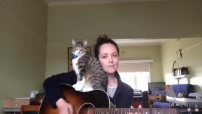 新しい弾き語りスタイル!?ギターと猫とお姉さんと