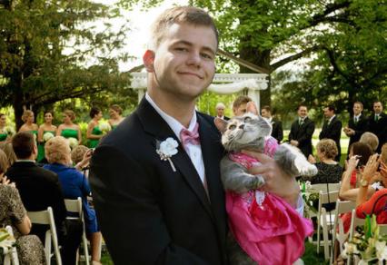 世界中が祝福してくれた兄の卒業☆彼が選んだプロムの相手はうちの猫