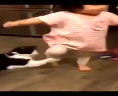 優しさ?それともいたずら!?前を走る娘ちゃんの足に手を引っ掛けた猫ちゃんw