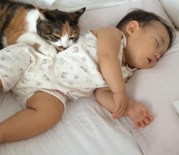 安心した表情で眠る赤ちゃんに寄り添っていたのは猫ちゃん!!猫ちゃんの愛情の深さにほっこりしてしまいます♪