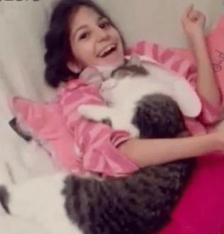 人懐っこく優しい性格の猫ちゃんの引き取り先が長い間見つからなかった理由は、障害を持ったある1人の少女と出会う為でした