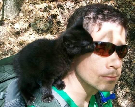 登山をしていて出会った迷子の子猫。懐いてくる子猫が可愛くて恋をしてしまった?!