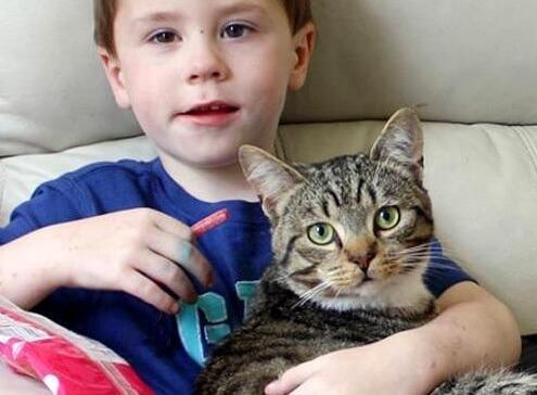 「何するにゃ!」兄弟をいじめっ子から守ったとっても家族思いの勇敢な猫。結果、見事に撃退!