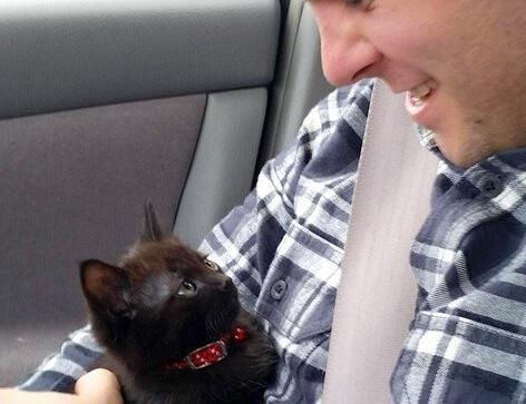 「待ってたニャン♡」保護施設で近寄ってきた子猫。数々の可愛いしぐさに夫婦はたちまちハートを撃ち抜かれた…