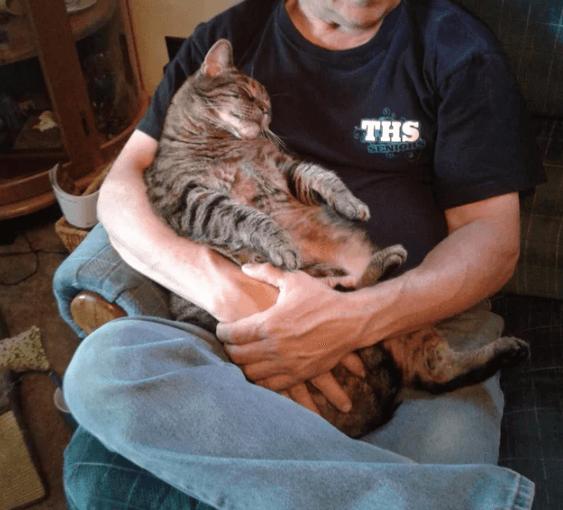 10年前、トラックの車輪の下から見つけた小さな子猫は今、毎朝出勤前の父の膝で30分以上甘えて過ごす