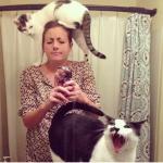 ツーショットを撮りたい飼い主さんと全力で自撮りを拒否する猫たちの仁義なき戦い