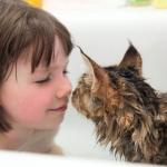 部屋に入って来た子猫は5歳の少女の膝に飛び乗り無二の親友になった。自閉症の少女の人生を変えたメインクーン