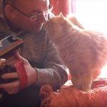 とってもいい感じ…アコーディオンを演奏する飼い主さんにハグとキスで甘え、うっとりする猫に癒やされる♡