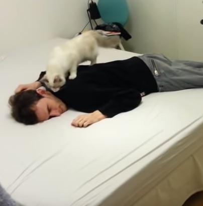 「んにゃ?!」突然苦しそうに倒れて死んだマネをした飼い主さんの姿を見て動揺して助けようとする猫さんにほっこり♡