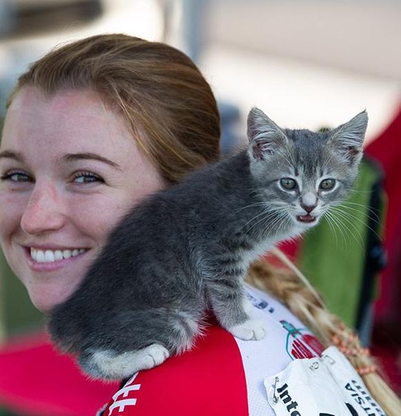 レースには勝てなかったけどきっと私の親友になる小さな子猫と出会った。自転車レースの会場で車の下から見つかった子猫