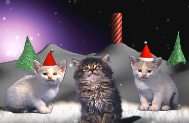 聖なる夜…クリスマスイヴにお贈りするにゃんずのSilent Night~きよしこの夜♪めっちゃ可愛い♡♡♡