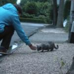 7年前、近所の通りの道端で座っている痩せた小さな猫に気付いた家族。幸運な1か月の記録
